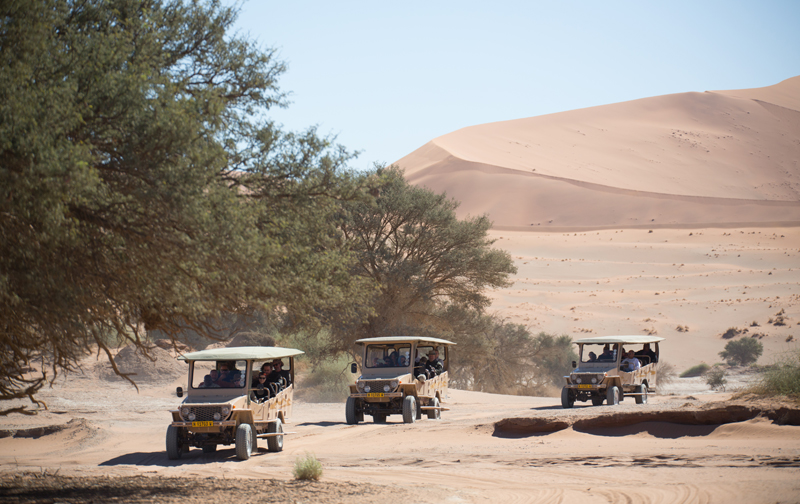 Guided Excursions to Sossusvlei & Deadvlei